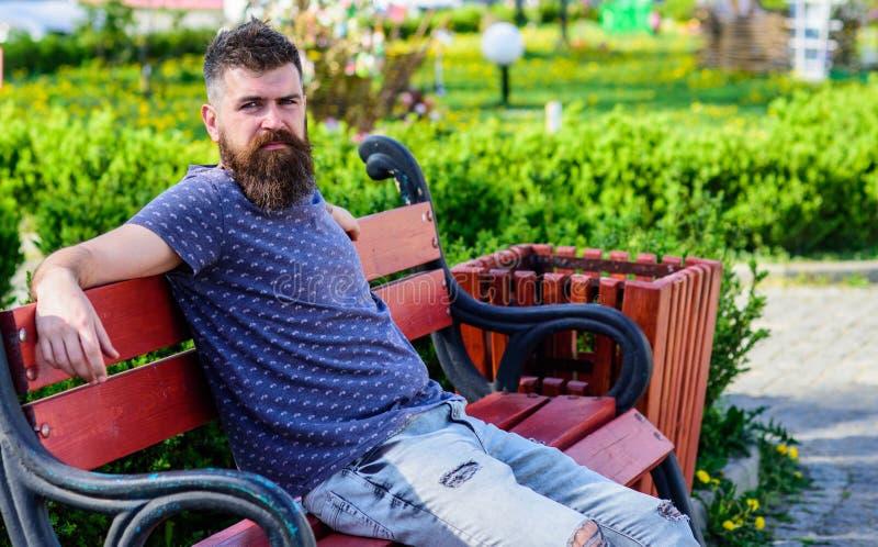 有胡子和髭的人在严密的面孔坐长凳在公园 放松有胡子的人,都市背景 旁边射击  库存照片