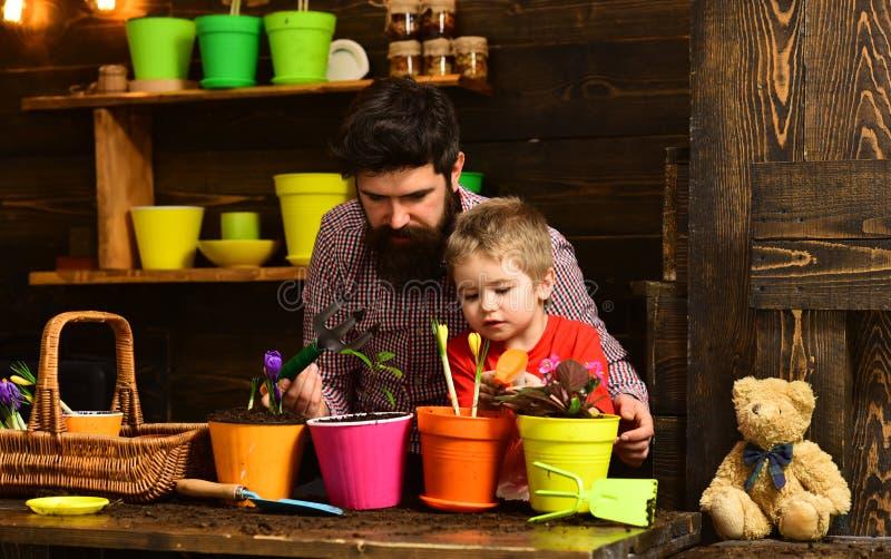 有胡子的人和小男孩儿童爱自然 r r 有春天花的愉快的花匠 ?? 免版税库存图片