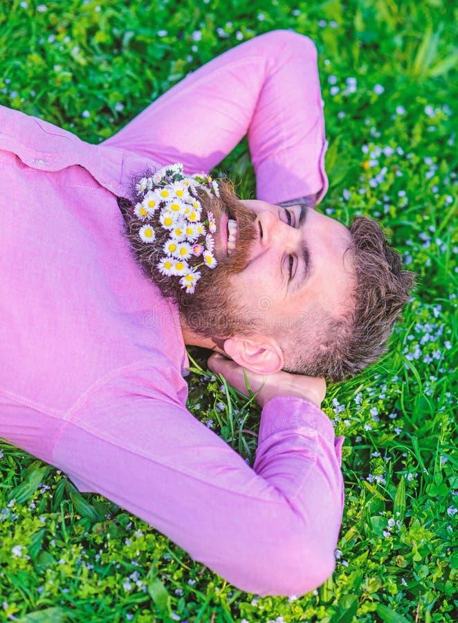 有胡子的人在微笑的面孔享受自然 有雏菊花束的行家在胡子放松的 与自然团结 免版税图库摄影
