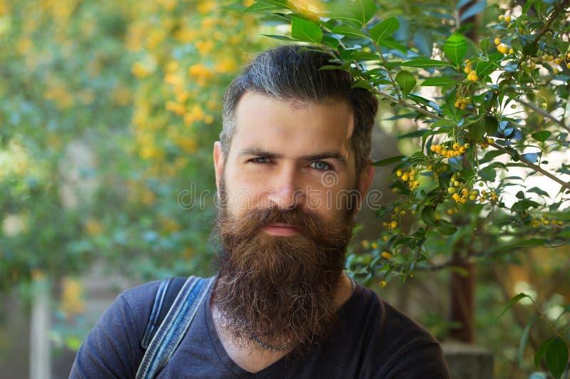 有胡子的年轻人行家 免版税图库摄影