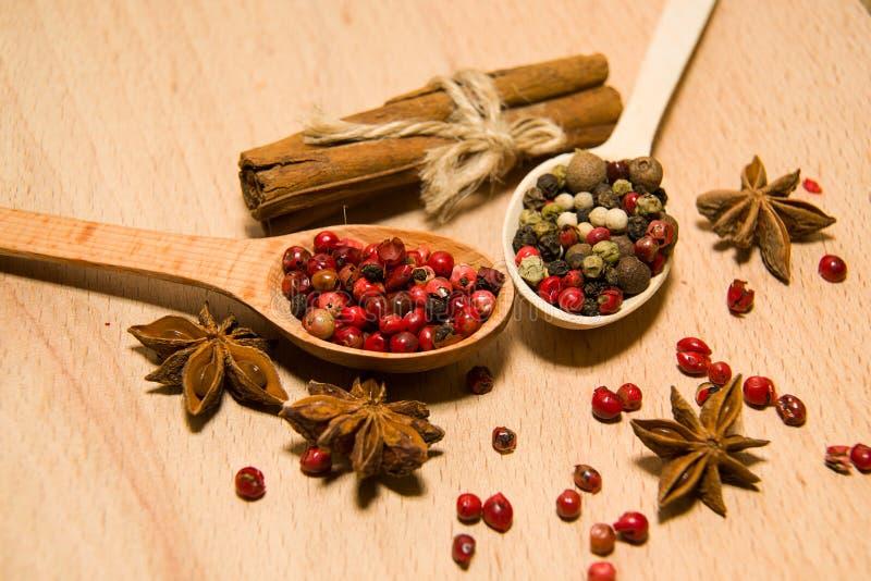 有胡椒、桂香和星美洲黑杜鹃五谷混合物的匙子  库存照片
