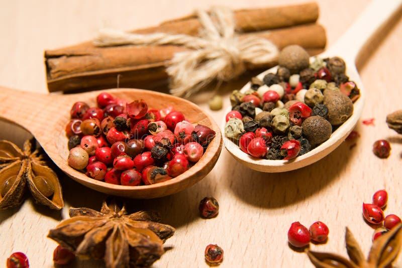 有胡椒、桂香和星美洲黑杜鹃五谷混合物的匙子  免版税库存照片