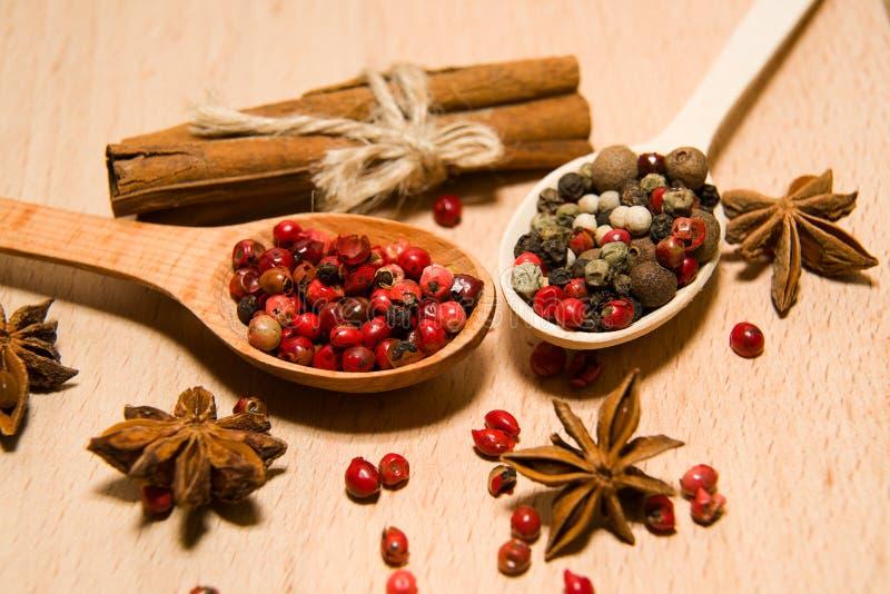 有胡椒、桂香和星美洲黑杜鹃五谷混合物的匙子  免版税库存图片