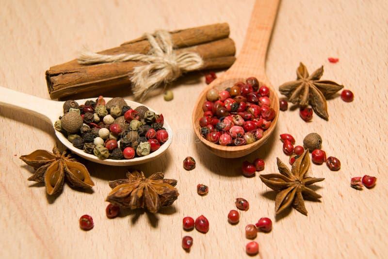 有胡椒、桂香和星美洲黑杜鹃五谷混合物的匙子  免版税图库摄影