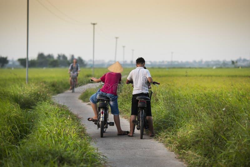 有自行车和米领域的孩子 免版税图库摄影