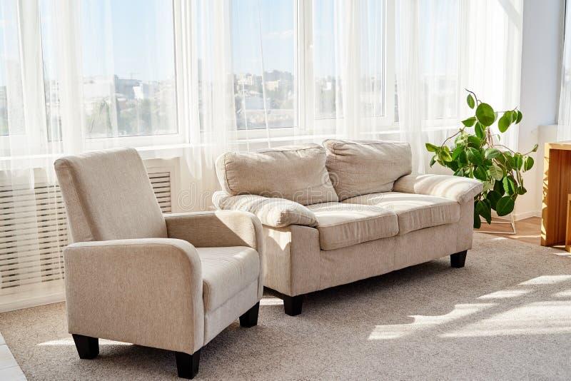 有舒适的米黄沙发、扶手椅子和小绿色树的时髦的现代客厅在地板上 客厅内部 库存图片