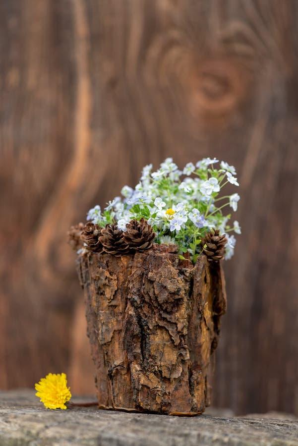 有芬芳花花束的装饰花瓶  Veronica chamaedrys? 图库摄影