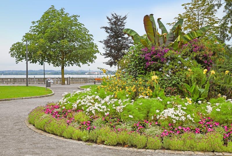 有花床的湖边散步在湖bodensee 免版税库存图片