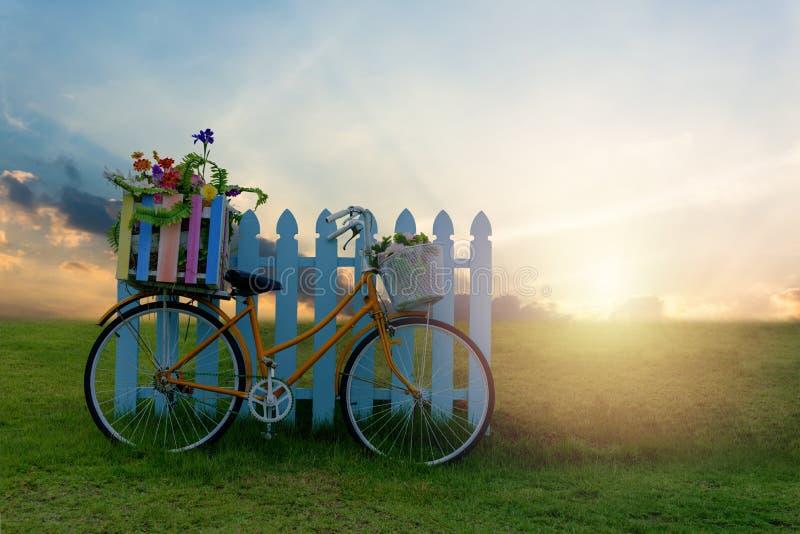 有花条板箱的自行车 库存图片