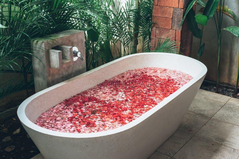 有花瓣的室外浴缸 库存照片