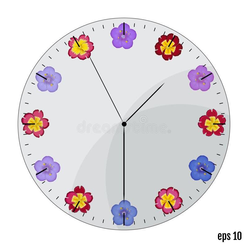 有花的手表拨号盘 背景概念框架沙子贝壳夏天 开花报春花a 皇族释放例证