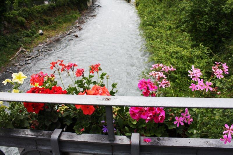 有花的桥梁在河在阿尔卑斯 瑞士 图库摄影