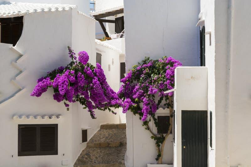 有花的渔村, Menorca,西班牙胡同 免版税图库摄影