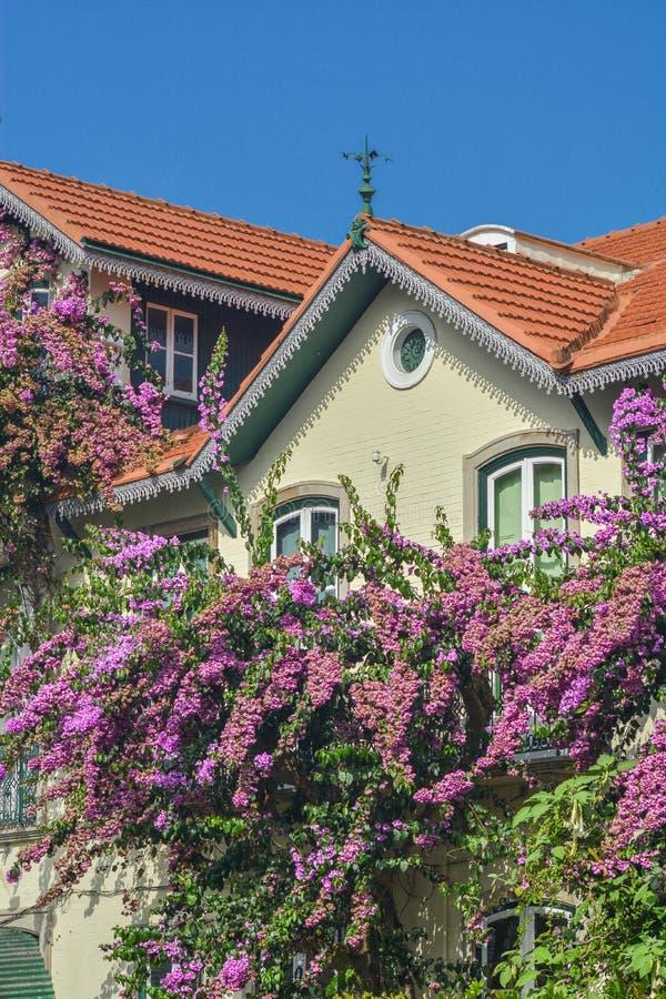 有花的经典房子在阳台在辛特拉 免版税库存图片