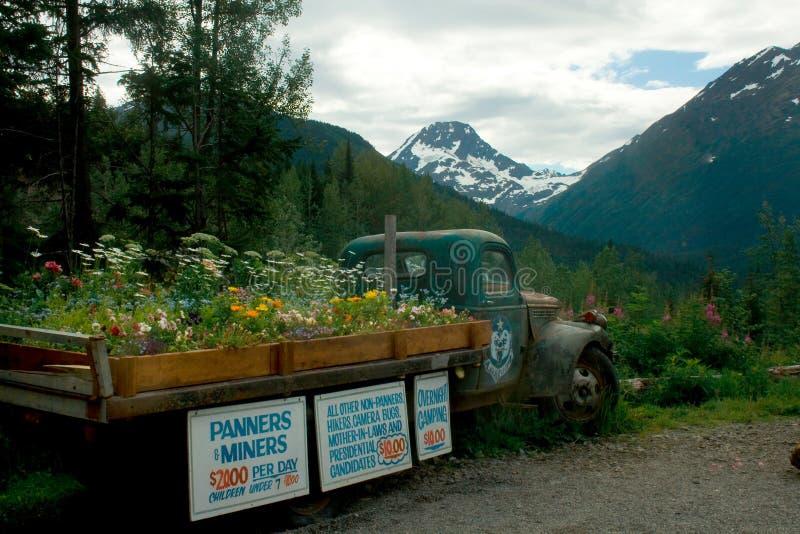 有花的老卡车在床上和签到阿拉斯加 免版税库存照片