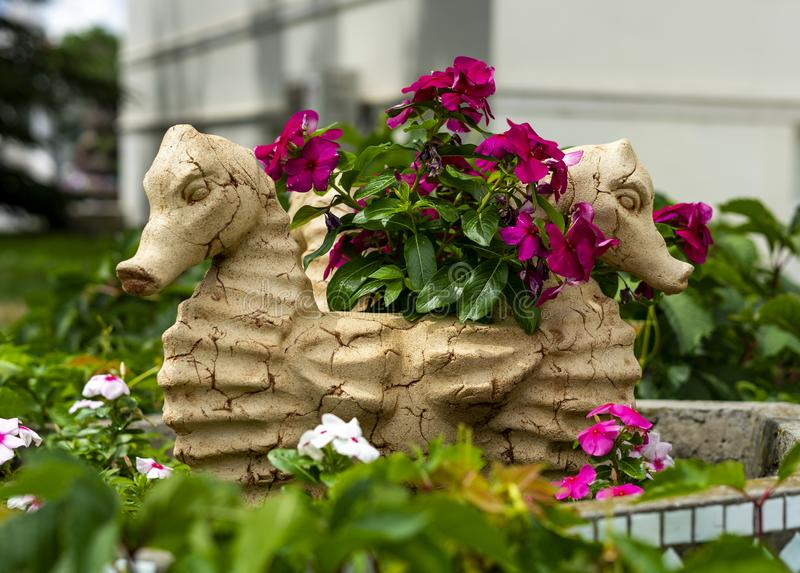 有花的花瓶以海象的形式 库存照片