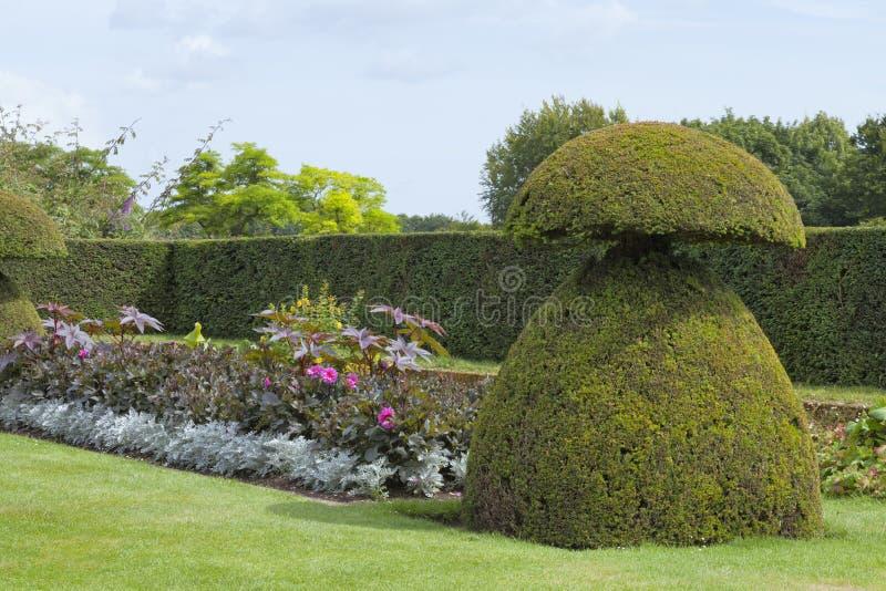 村庄, 典雅, 围绕, 英国, 英语, 花卉, 花, 花圃, 叶子, 正式, 庭院图片