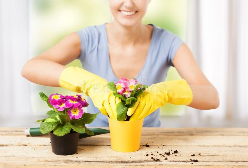 有花的主妇在罐和从事园艺的集合 免版税图库摄影