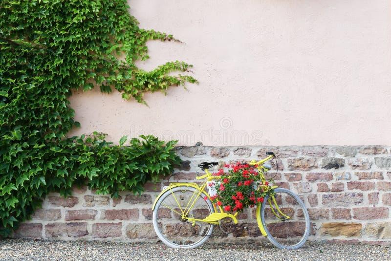 有花的黄色自行车在博若莱红葡萄酒 免版税库存图片