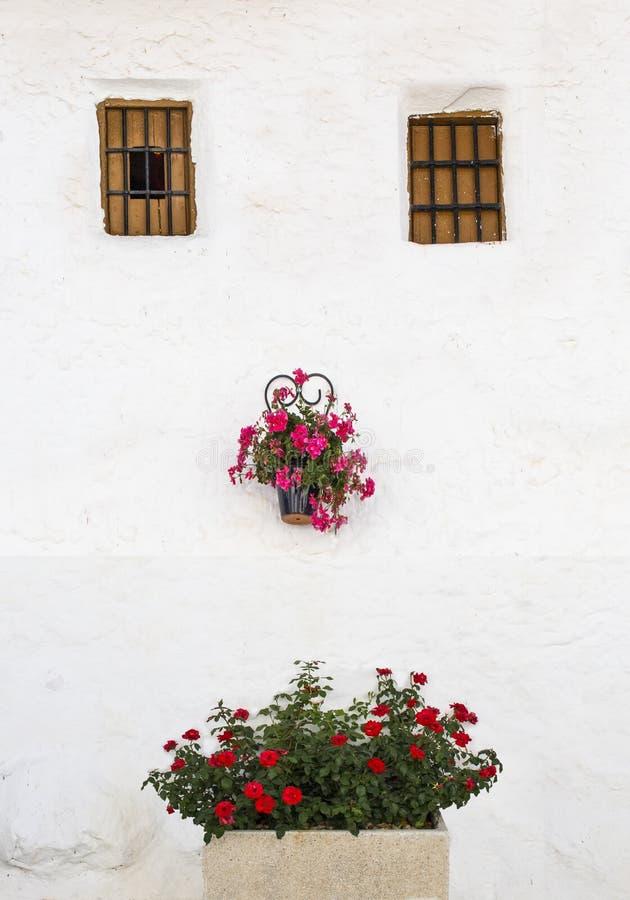有花盆和花架面孔的安达卢西亚的被粉刷的房子 免版税库存图片