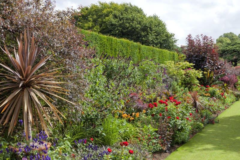 有英国兰开斯特家族族徽的五颜六色的花圃由绿色高树篱 图库摄影