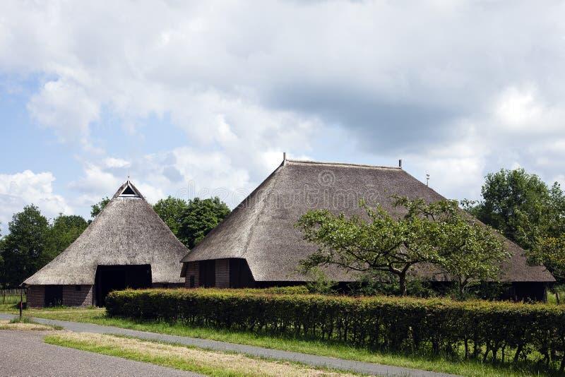 有茅屋顶的美丽的老荷兰谷仓 免版税库存图片