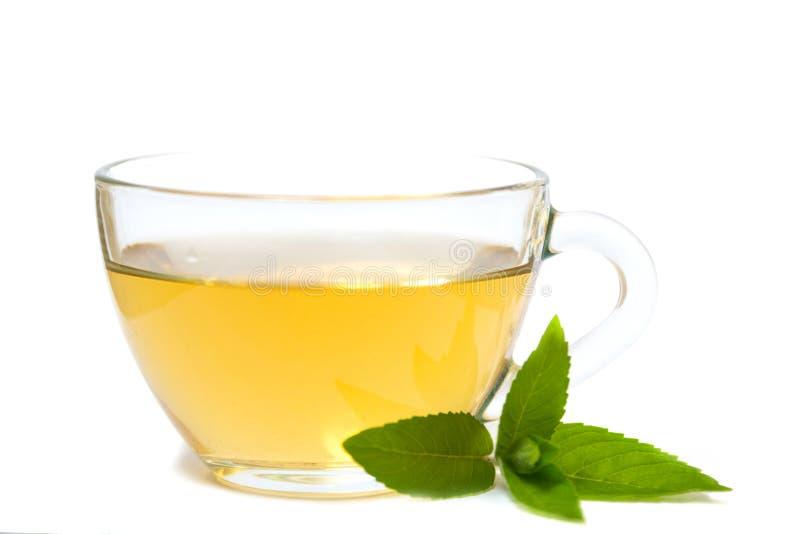 有茶和绿色薄荷的叶子的玻璃透明杯子 免版税库存照片