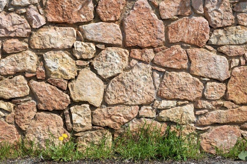 有草和花的-背景石墙 免版税库存图片