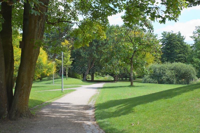 有草坪的绿色公园和树在城市 库存图片