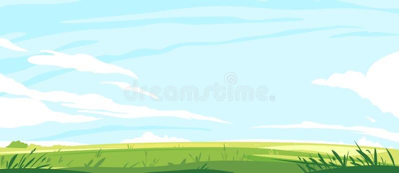 有草的夏天绿色草坪 库存例证