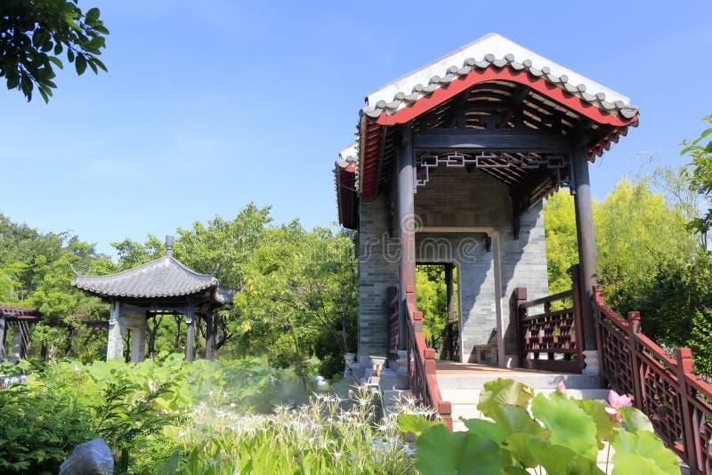 有莲花和蜘蛛兰花的中国古典庭院 免版税图库摄影
