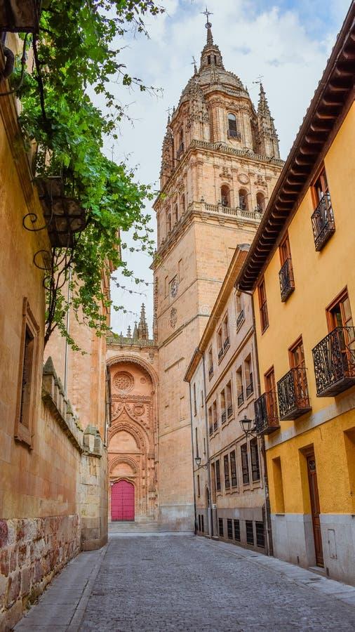 有萨拉曼卡新的大教堂的五颜六色的街道在背景中 图库摄影