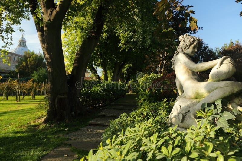有葡萄园的公园 库存图片