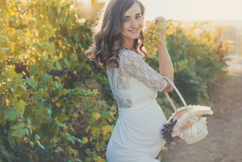 有葡萄的怀孕的女孩在葡萄园里 库存图片