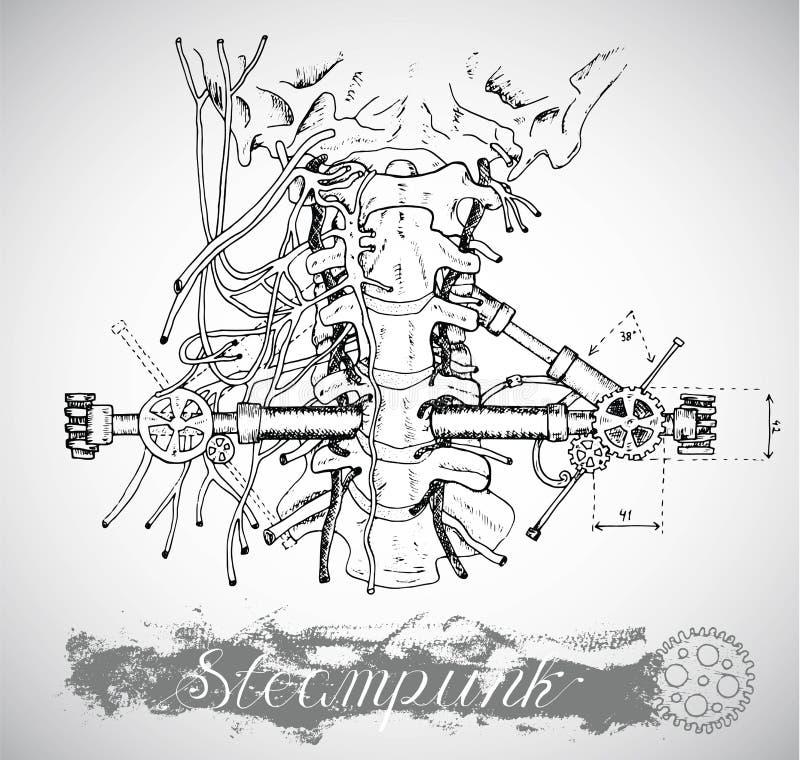 有葡萄酒机制的人的解剖学喉头在steampunk样式 皇族释放例证