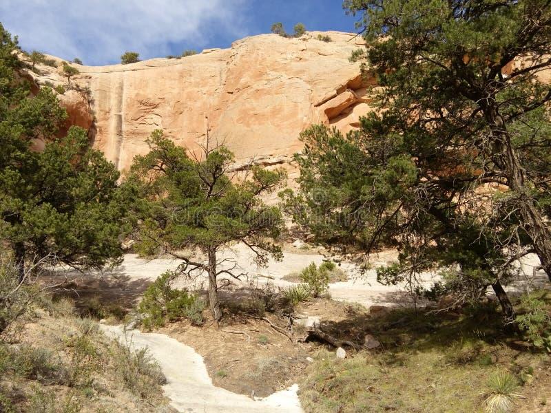 有蓝天的红色岩石墙壁 窗口岩石足迹,亚利桑那 免版税库存图片