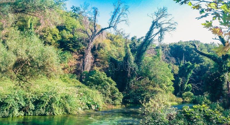 有蓝眼睛春天在阿尔巴尼亚,著名地标水春天和自然现象的河Bistrica在夫罗勒州 库存照片