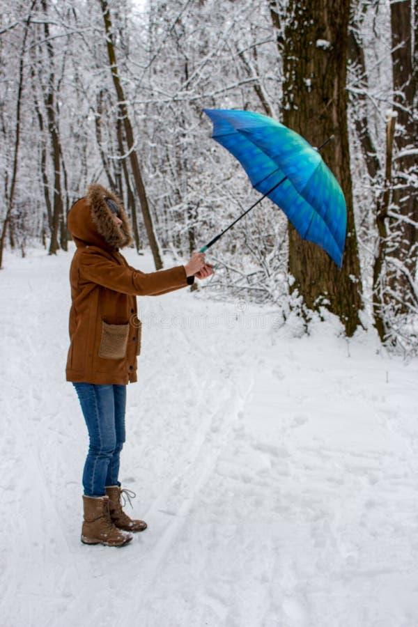 有蓝色伞的女孩在有强风的多雪的森林里 降雪概念 在湿雪雨下的妇女在冬天公园 图库摄影