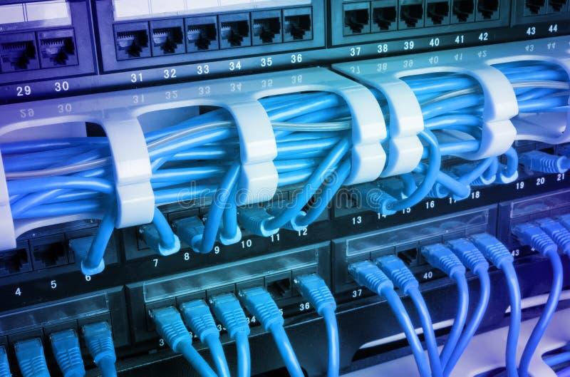 有蓝色缆绳的服务器机架 免版税图库摄影