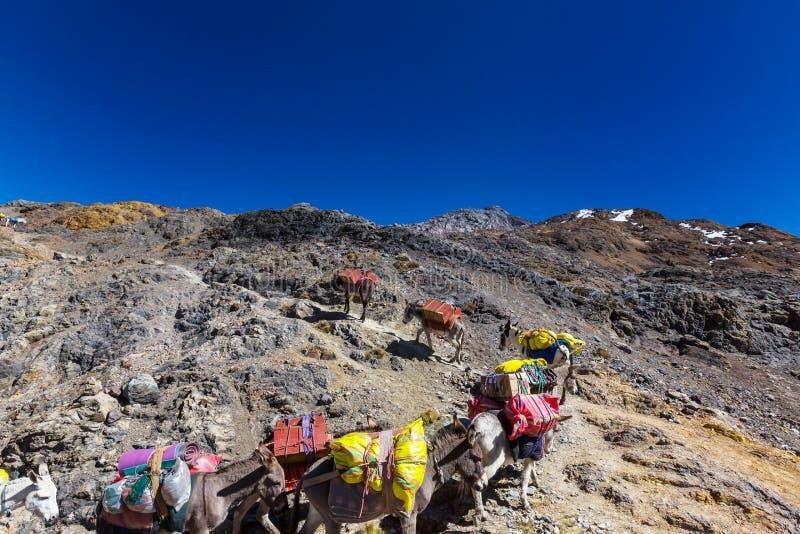 有蓬卡车在山脉 免版税图库摄影