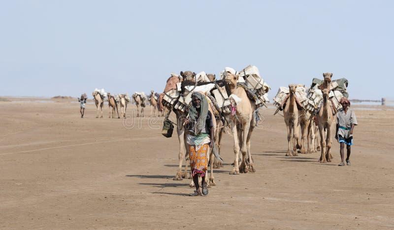 有蓬卡车埃赛俄比亚的盐 图库摄影