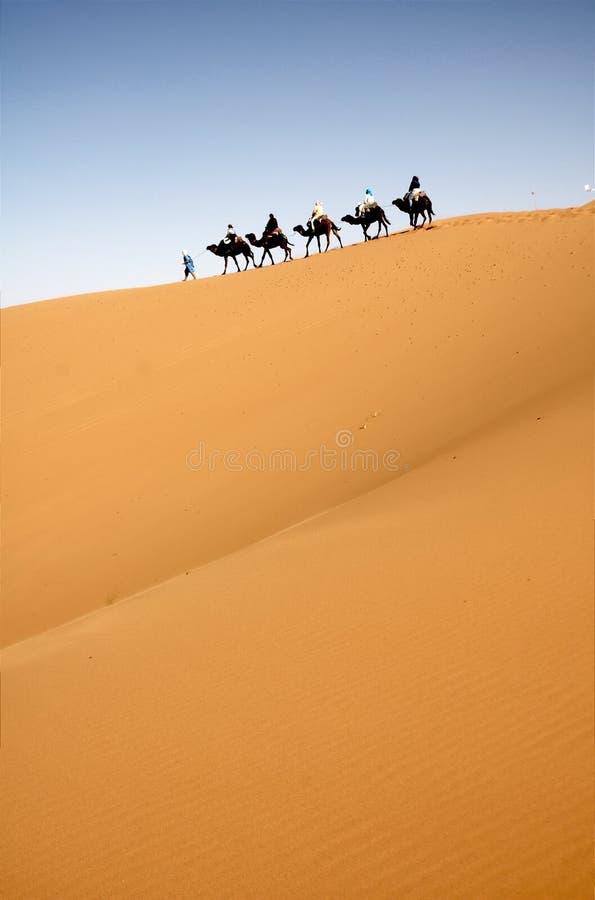 有蓬卡车沙漠 免版税图库摄影