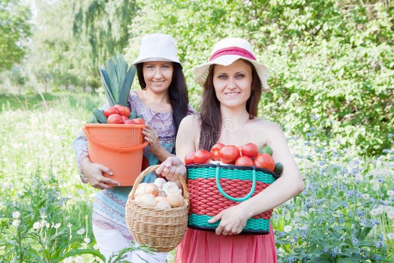 有蔬菜收获的愉快的妇女 免版税库存照片