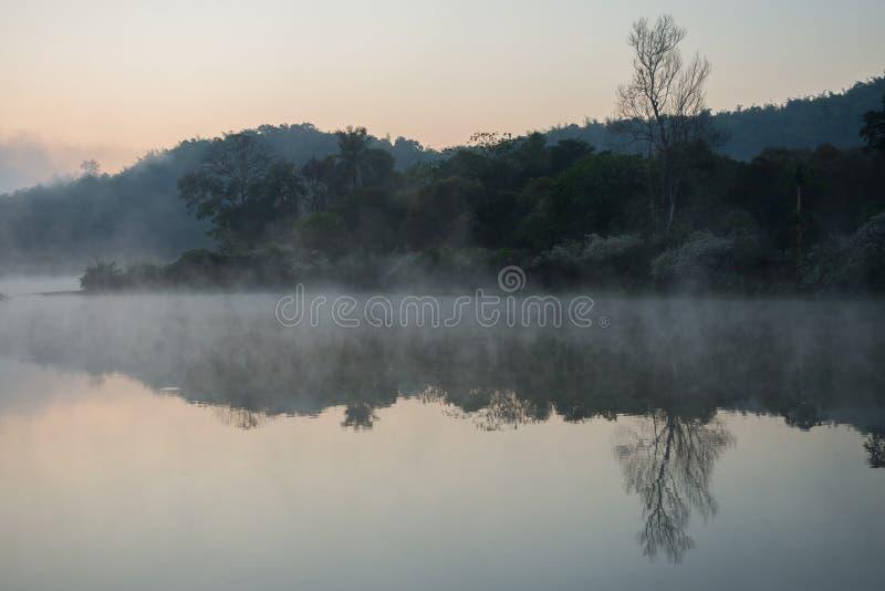 有薄雾在河 库存图片