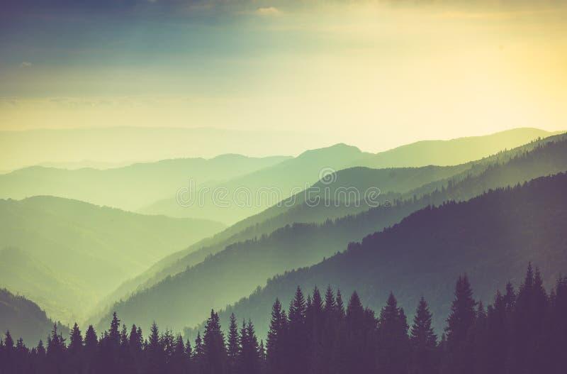 有薄雾的夏天山小山风景 免版税库存图片