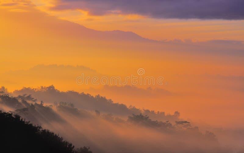 有薄雾的婆罗浮屠 库存照片