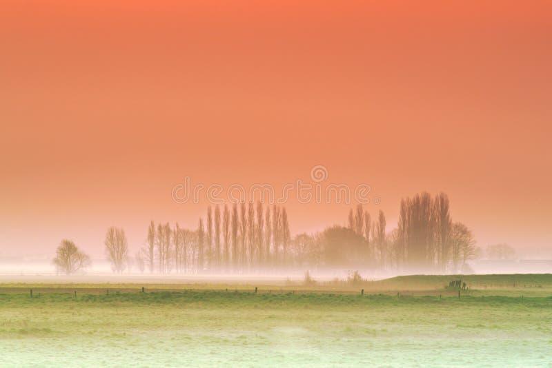 有薄雾的富兰德背景 免版税库存照片