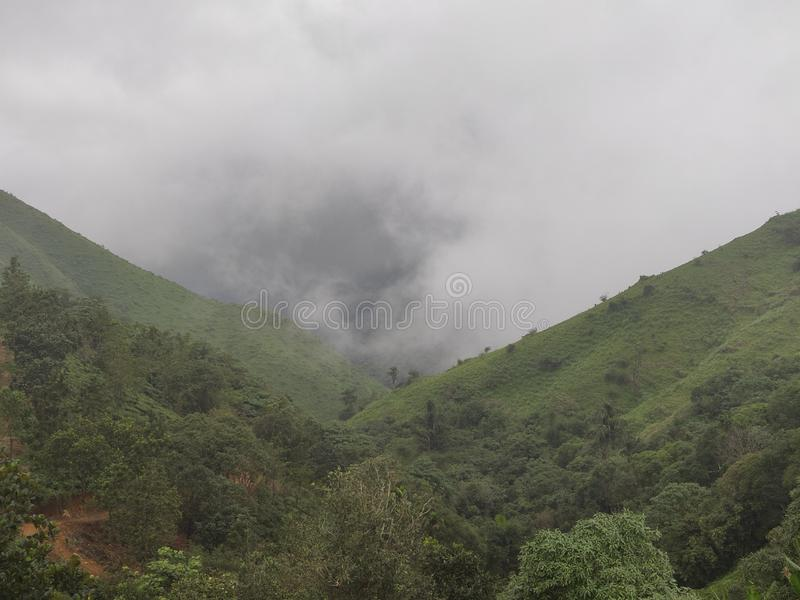 有薄雾的山谷 免版税库存照片