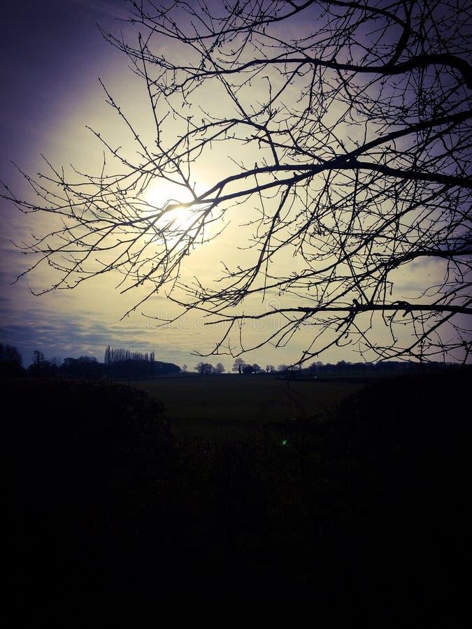 有薄雾的日出 库存照片