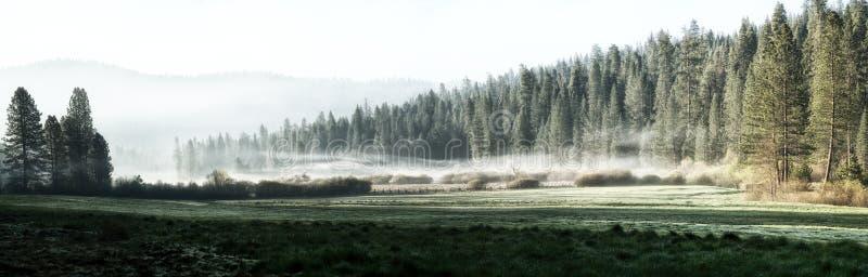 有薄雾的早晨在优胜美地 免版税图库摄影